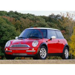 Silent bloc renforcé Mini cooper powerflex
